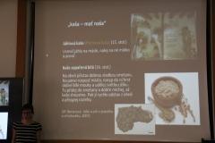 Základný pokrm všedných dní predstavovala kaša z obilnín či strukovín. recepty na prípravu kaší, zapísané v stredoveku, mohli byť rovnaké aj v dobe bronzovej a železnej.